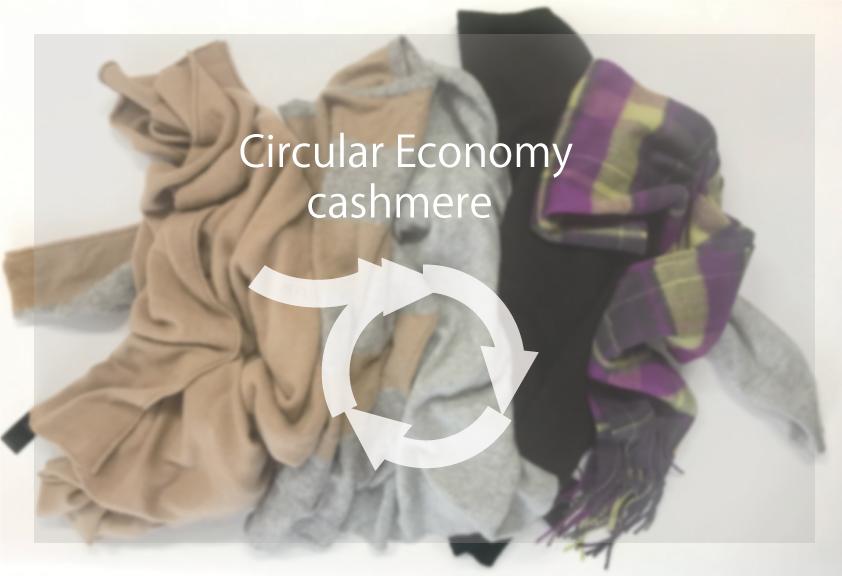 資源を有効に 循環型のカシミヤ産業に向けて